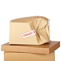 The Importance of Moving Insurance